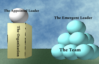 Emergent Leadership