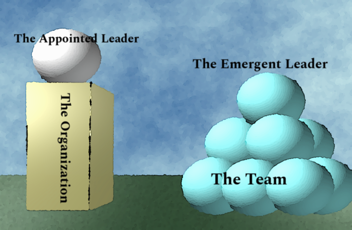 Emergent Leadership