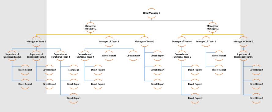 Average Organizational Chart