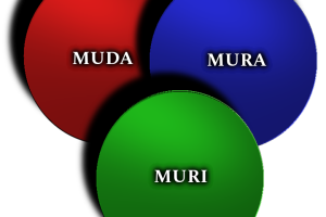 Muda Mura, Muri in Lean